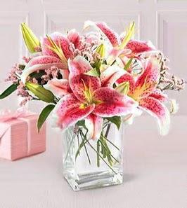 2 dal kazablanka görsel vazosu  Adana çiçek siparişi sitesi