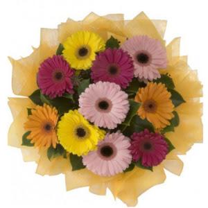 Adana İnternetten çiçek siparişi  11 adet karışık gerbera çiçeği buketi
