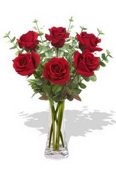 Adana çiçekçi mağazası  6 kırmızı gül vazosu