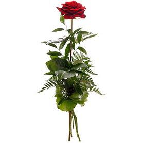 Adana online çiçekçi , çiçek siparişi  1 adet kırmızı gülden buket