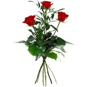 Adana uluslararası çiçek gönderme  3 adet kırmızı gülden buket