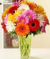 Adana çiçek servisi , çiçekçi adresleri  15 adet gerbera çiçek vazosu