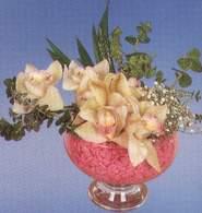 Adana çiçek mağazası , çiçekçi adresleri  Dal orkide kalite bir hediye