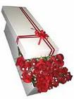 Adana çiçekçi telefonları  11 adet 1.kalite magnum güller