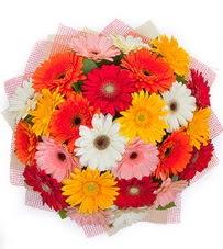 15 adet renkli gerbera buketi  Adana yurtiçi ve yurtdışı çiçek siparişi