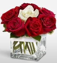 Tek aşkımsın çiçeği 8 kırmızı 1 beyaz gül  Adana uluslararası çiçek gönderme