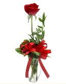 vazo içerisinde 1 adet kırmızı gül  Adana çiçekçi telefonları