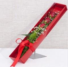 Kutu içerisinde 3 adet kırmızı gül  Adana online çiçek gönderme sipariş