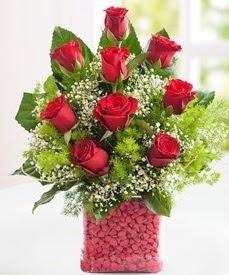 Cam içerisinde 9 adet kırmızı gül  Adana internetten çiçek satışı