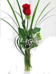 Cam içerisinde 1 kırmızı gül  Adana çiçek gönderme sitemiz güvenlidir