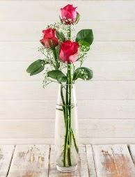 Cam içerisinde 3 kırmızı gül  Adana çiçek satışı