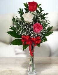 Camda 2 kırmızı 1 beyaz gül  Adana ucuz çiçek gönder