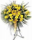 Adana yurtiçi ve yurtdışı çiçek siparişi  Sari kazablanka Ferforje
