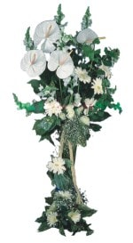 Adana çiçek mağazası , çiçekçi adresleri  antoryumlarin büyüsü özel