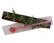 Adana hediye çiçek yolla  3 adet gül.kutu yaldizlidir.