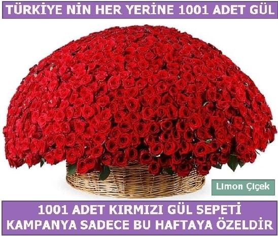 1001 Adet kırmızı gül Bu haftaya özel  Adana İnternetten çiçek siparişi
