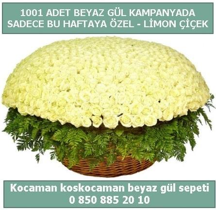 1001 adet beyaz gül sepeti özel kampanyada  Adana çiçek gönderme sitemiz güvenlidir
