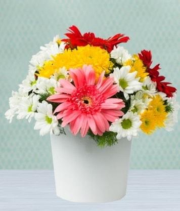 Seramik Vazoda Gelbera ve Papatya  Adana çiçek gönderme