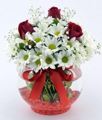 Fanusta 3 Gül ve Papatya  Adana internetten çiçek satışı