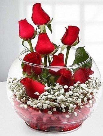 Kırmızı Mutluluk fanusta 9 kırmızı gül  Adana çiçek siparişi sitesi