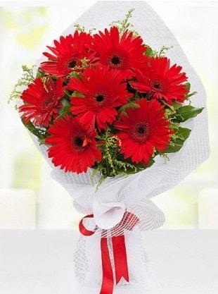 Kırmızı Gelbera Buketi  Adana internetten çiçek siparişi