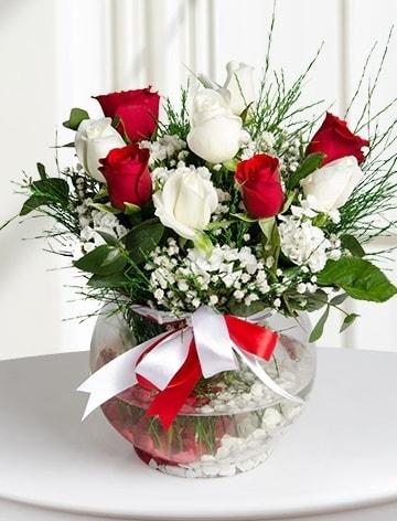 Aşk Küresi  5 beyaz 5 kırmızı gül fanusta  Adana internetten çiçek satışı