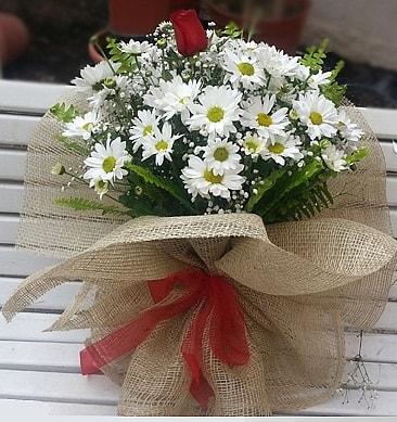 Papatya 1 adet kırmızı gül buketi  Adana çiçekçiler