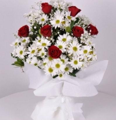 7 adet kırmızı gül ve papatyalar krizantem  Adana internetten çiçek satışı