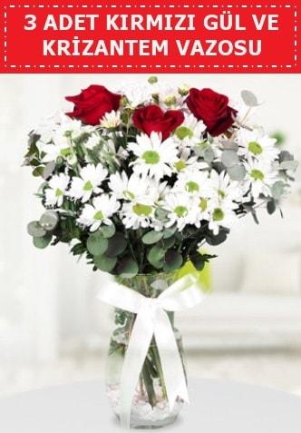 3 kırmızı gül ve camda krizantem çiçekleri  Adana çiçek gönderme