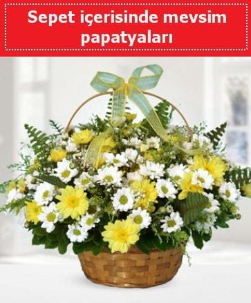Sepet içerisinde mevsim papatyaları  Adana ucuz çiçek gönder