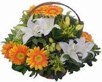 Adana online çiçekçi , çiçek siparişi  sepet modeli Gerbera kazablanka sepet