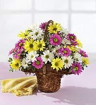 Adana çiçekçiler  Mevsim çiçekleri sepeti
